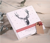 Gif box with a reindeer print 2210_M