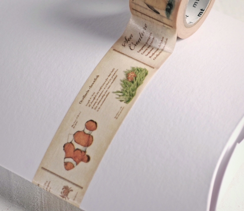 Washi Tape Peces Beige