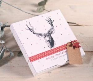 Gift box with reindeer sketch