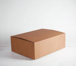 Caja para mudanzas mediana