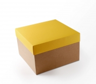 Cardboard boxes for gifts or shipping selfpackaging hat boxes hat boxes reheart Choice Image