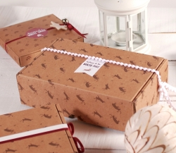 Shipping box with reindeer