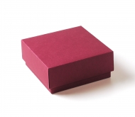 Gefütterte quadratische Schachtel