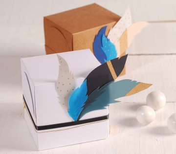 Square gift box with feathers