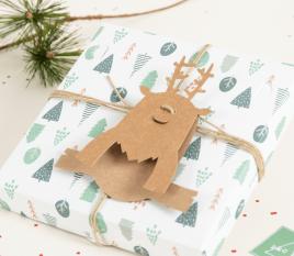 Rudolph accessory